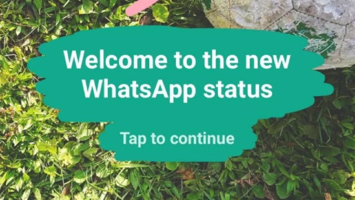 How to save WhatsApp Status (photos and videos) on your Android phone -  Mobilescout.com